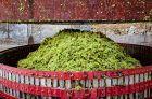 'Menos efervescencia y mucho carácter': una introducción a los vinos semiespumantes